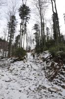 Beskid Mały (Łamana Skała) - 15.02.2014
