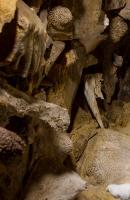 Jaskinia Zawał-4