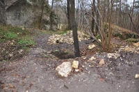 Okolice Podlesic - 19.12.2014