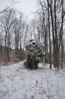 Wytopy, początek sezonu - 26.12.2014
